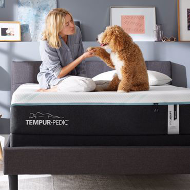 Picture for category Tempur Pedic Mattress